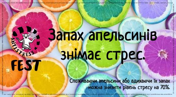 22688455_177415786169026_3886419124380914833_n